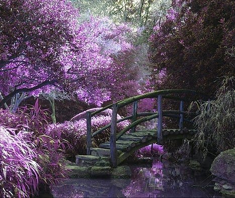 a bridge in a fairy garden covered in lilac colors