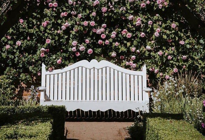 My little fairy garden-An Oasis of Peace