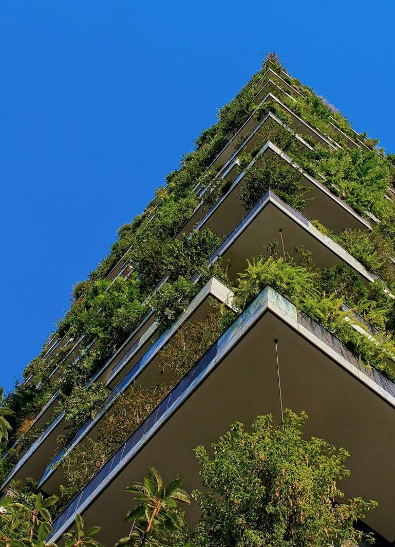 balconies of a appartment building covered with plants